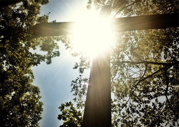 cross in forest