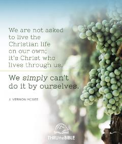 Fruitful Living quote