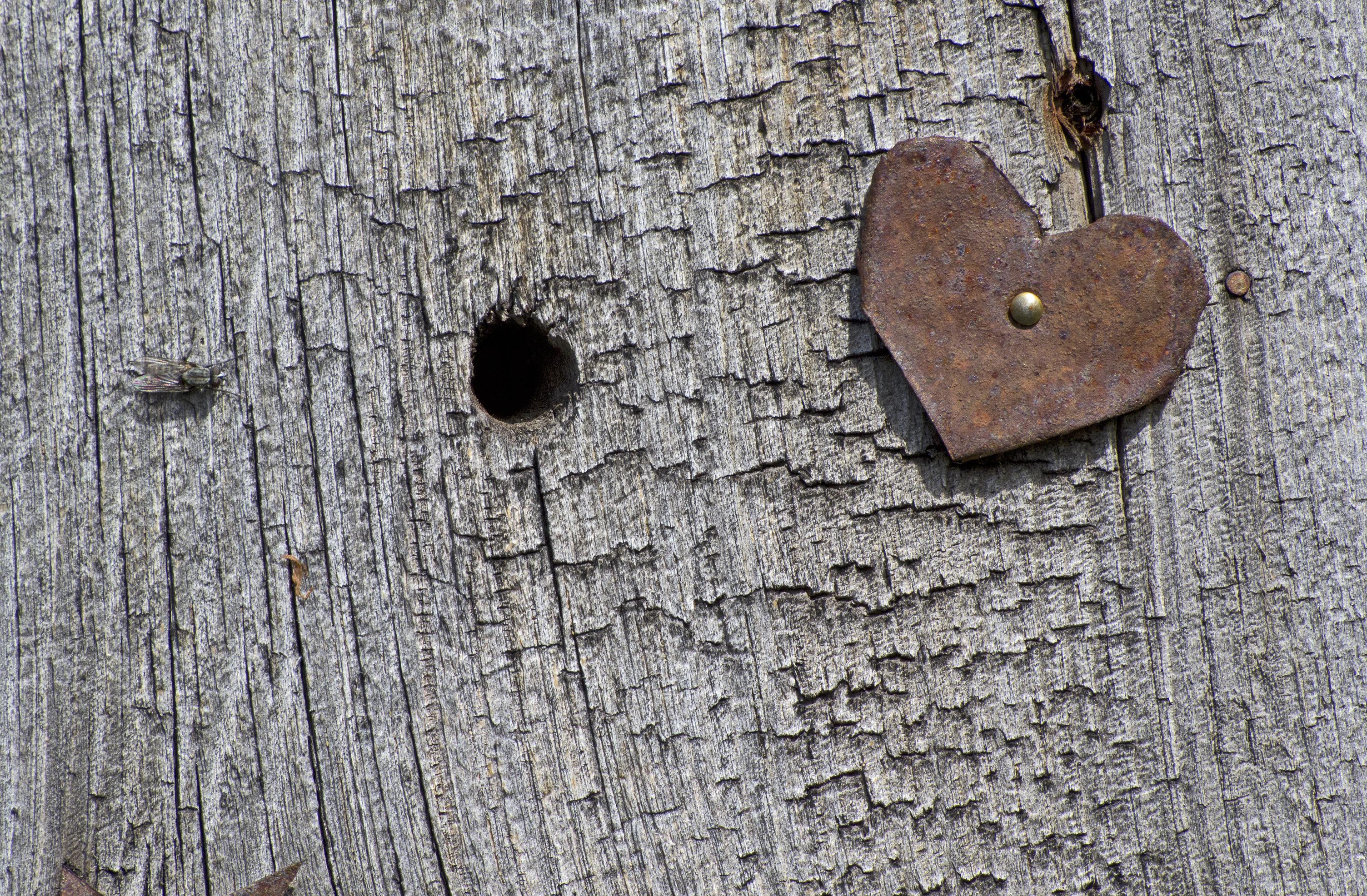 Metal heart on wood